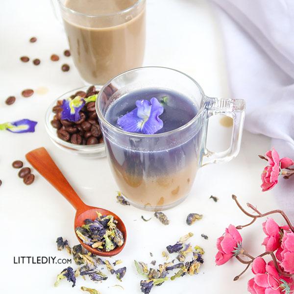 BUTTERFLY PEA COFFEE
