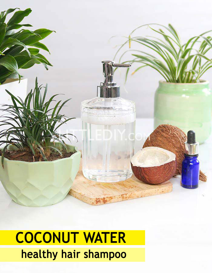 Coconut Water Healthy hair growth Shampoo