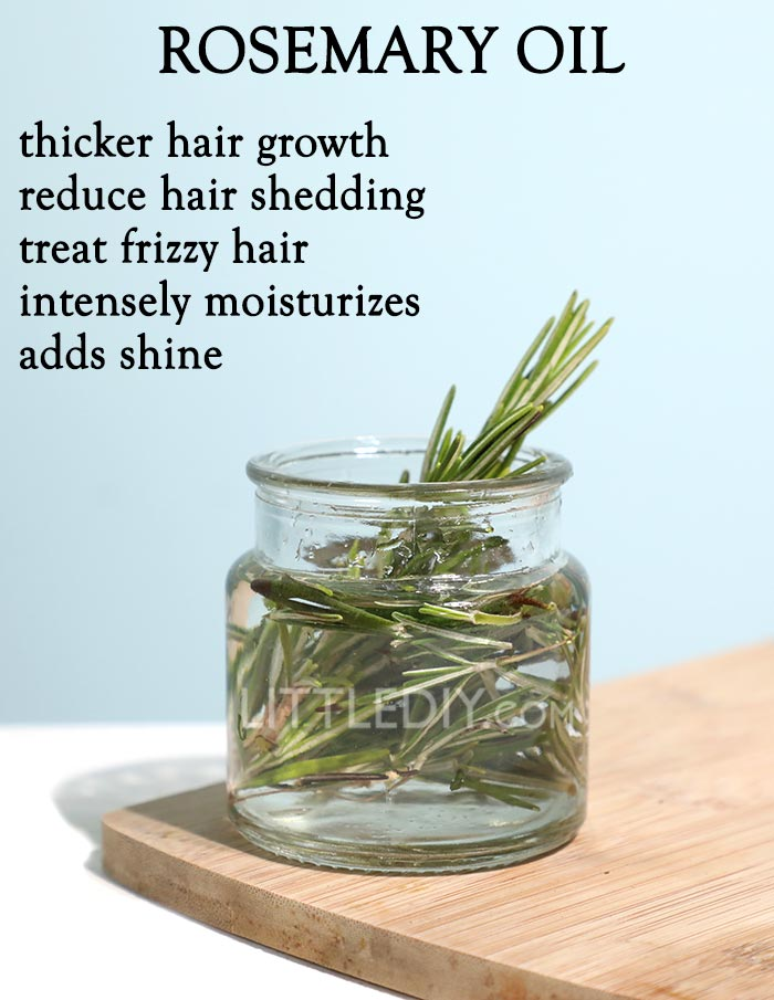 ROSEMARY OIL for faster hair growth