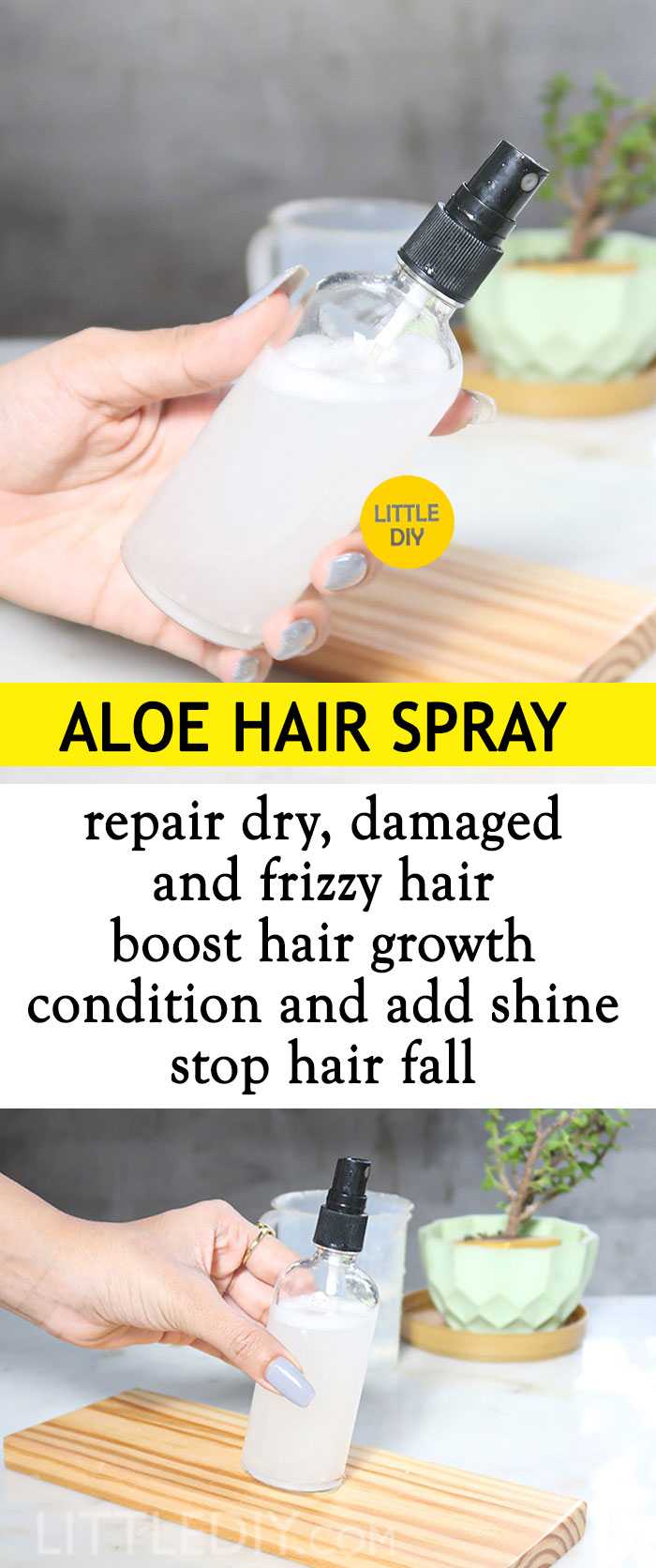 Photo of ALOE VERA TO REPAIR DRY DAMAGED HAIR